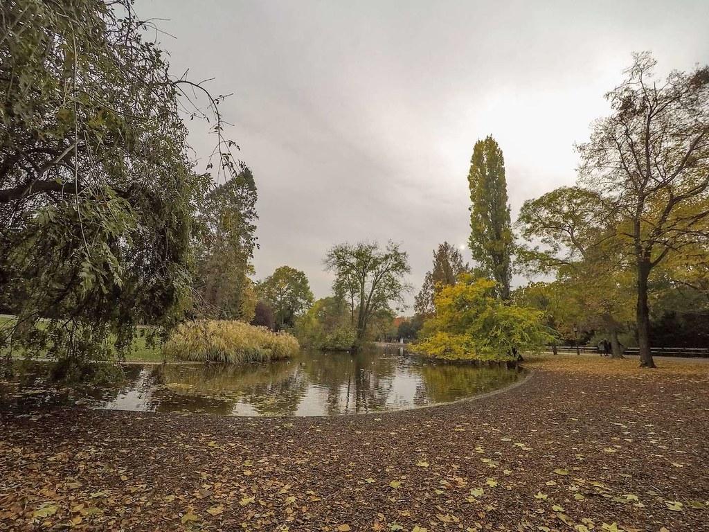 Pond in Stadtpark, Vienna