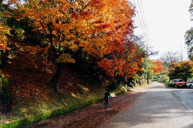 Seto_Kamagaki_09