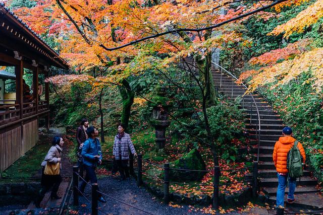 Kyoto_Eikando_15