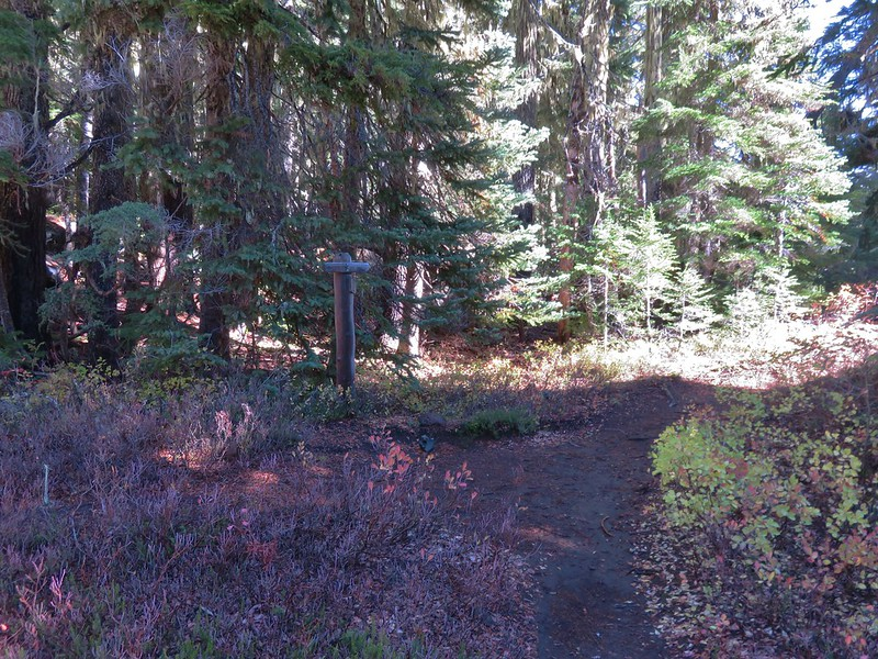 Tenas Lakes Trail junction with the Benson Trail