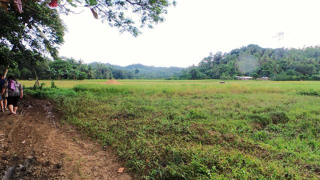 Farm-Calbayog-City-Samar