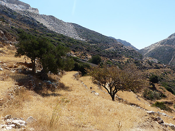 paysage montagne 1