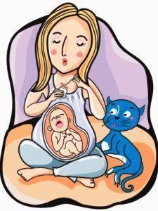 Bahaya virus toksoplasma bagi ibu hamil