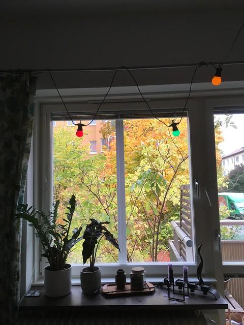 autumn, stockholm
