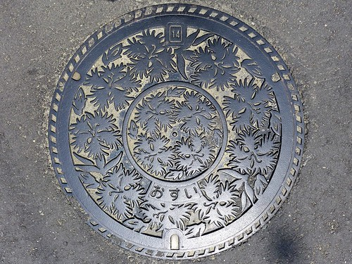 Kofu Yamanashi, manhole cover (山梨県甲府市のマンホール)