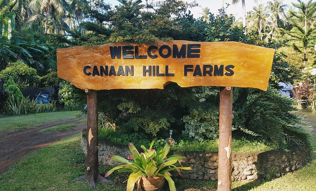 The promised land: Canaan Hill Farms and Honey Garden