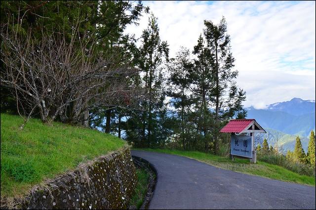 福壽山農場楓葉季019