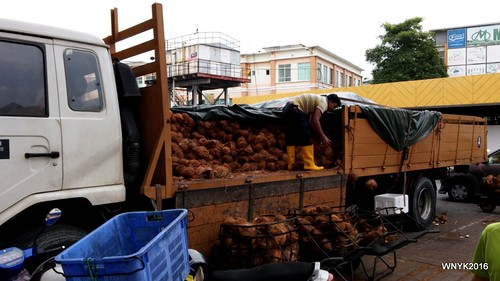 A Truckload of Coconuts