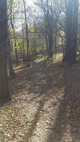 Jones Run Trail