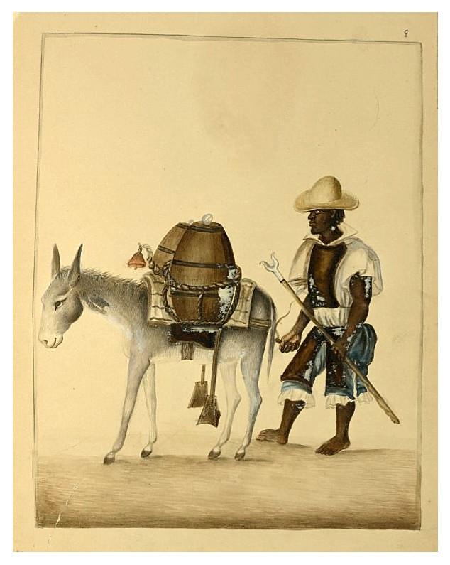002 Aguador- década 1830-40- Pancho Fierro-NYPL