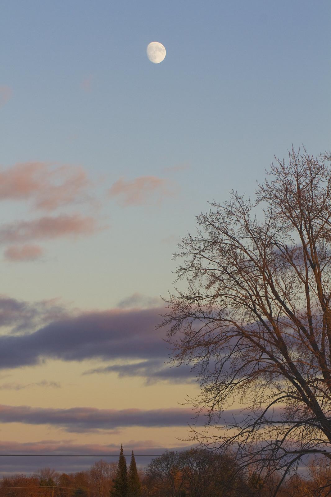 window view dusk2