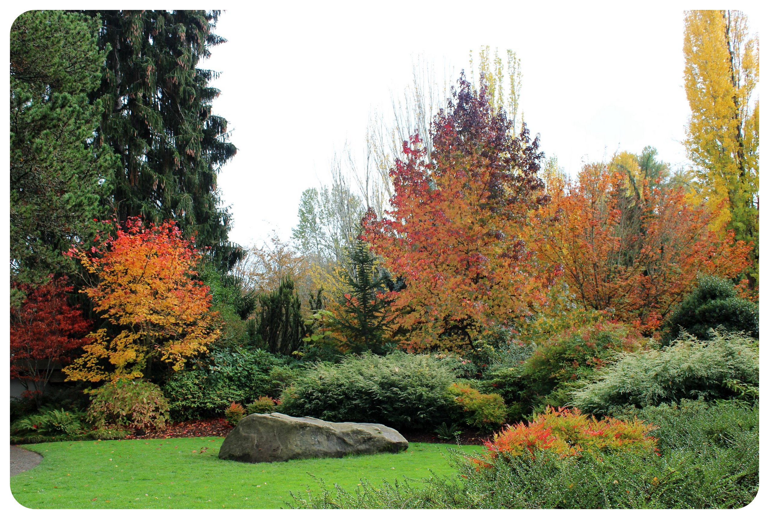 seattle kubota gardens