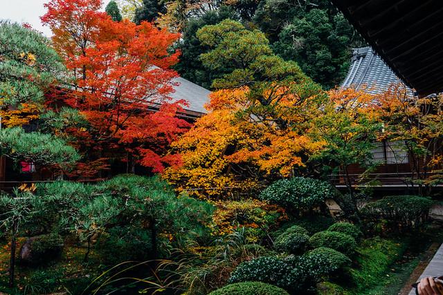 Kyoto_Eikando_19