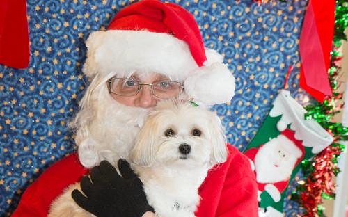 Pip and Santa!