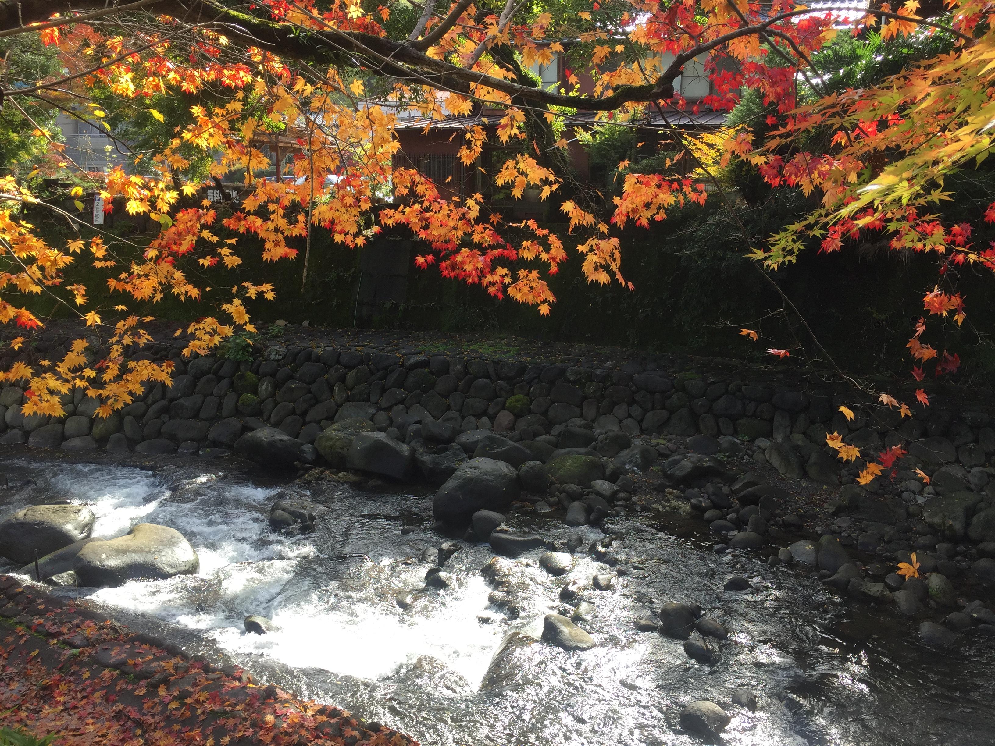Shuzenji, Izu-city, Shizuoka prefecture, Japan