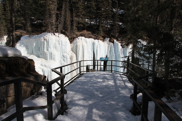 Johnston's Canyon spring 2014