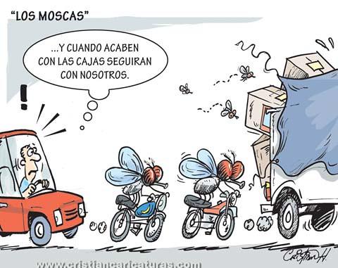 Los moscas
