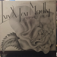 LUV YOU MADLY ORCHESTRA:LUV YOU MADLY ORCHESTRA(JACKET A)