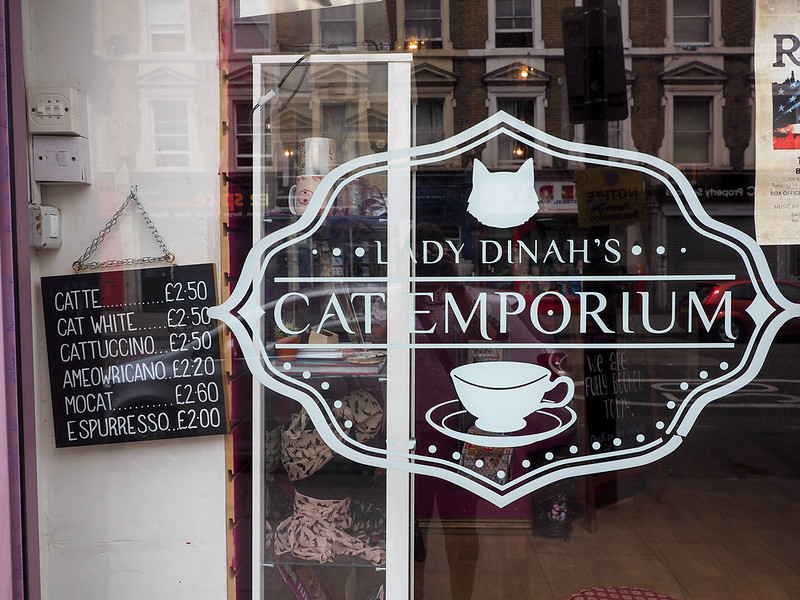 Lady Dinah's Cat Emporium in London