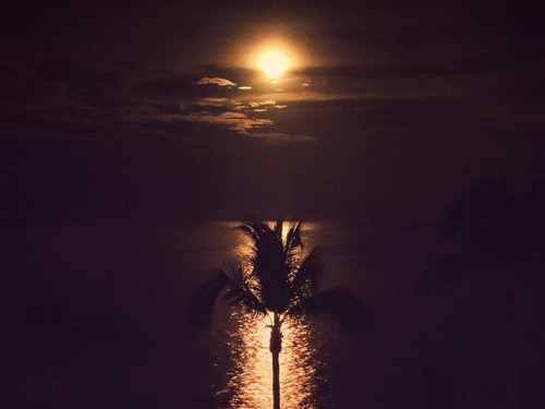 'Super Moon' setting on the ocean in Puerto Vallarta