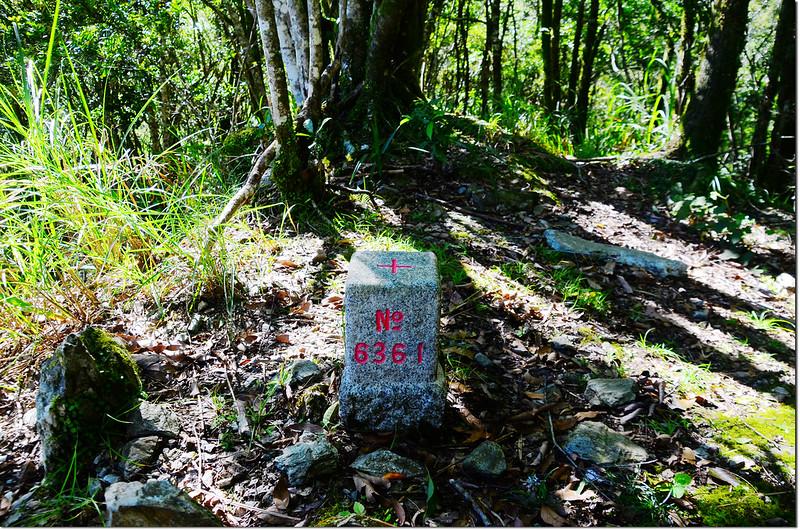 拳背山三等三角點(#6361Elev. 1367 m) 1