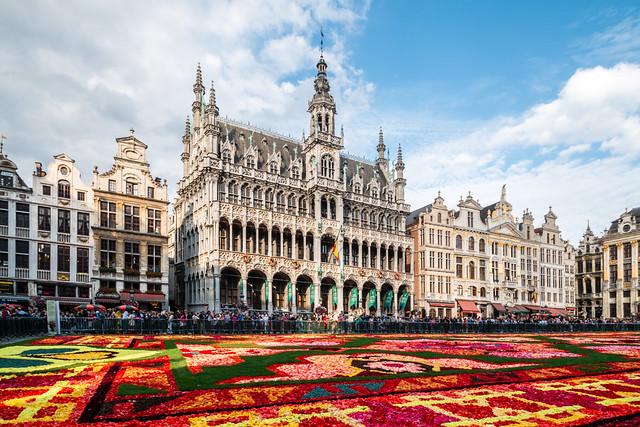 Flower carpet in Brussels, Belgium