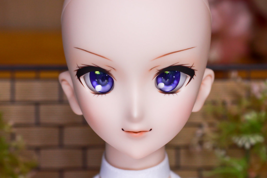 DDH-07(N)Sc-p2-head-1
