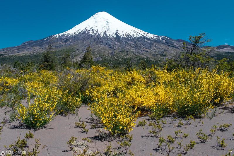 Volcán Osorno - Petrohué
