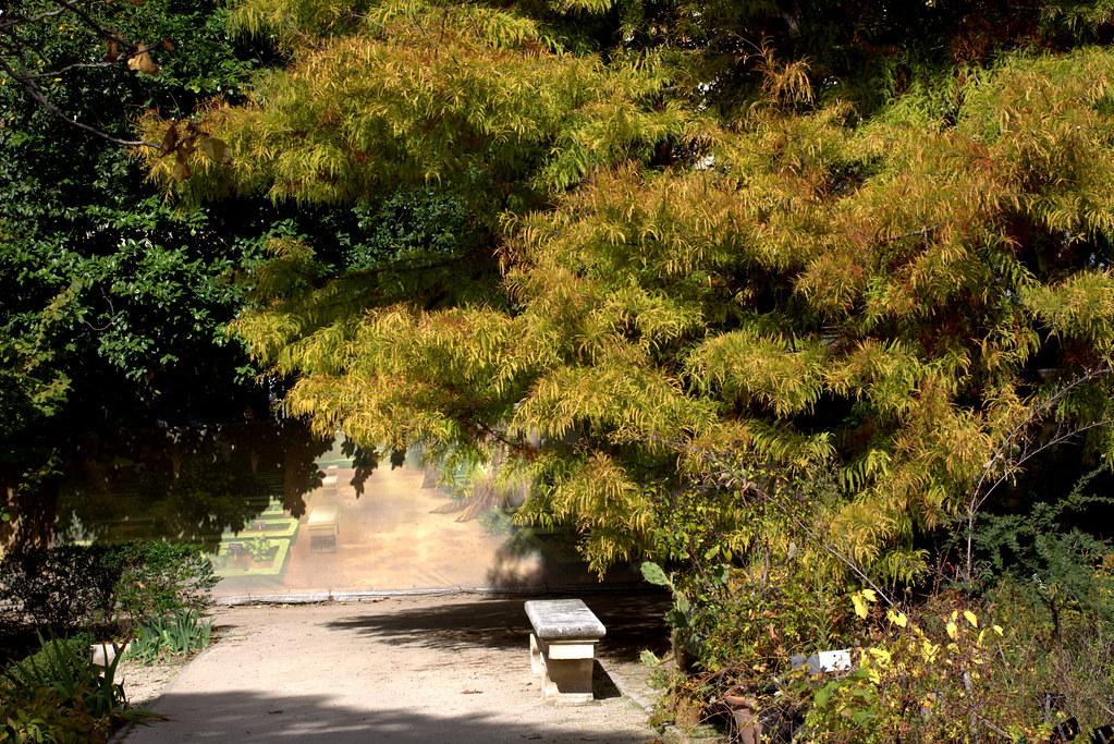 un banco para contemplar los colores del otoño tranquilamente