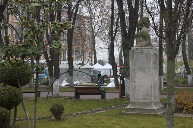 Tarabe cu vanzare in Parcul Alexandu Ioan Cuza din Tecuci - 21-11-2016