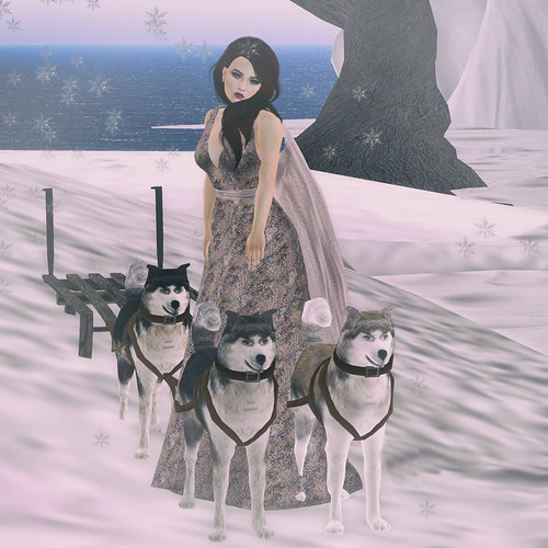 Glam Mushing