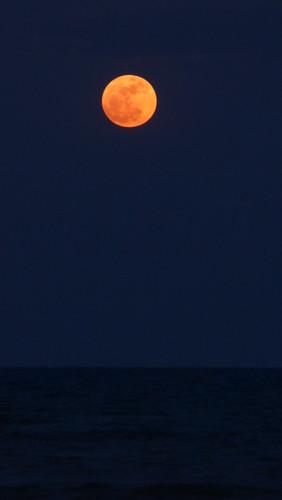 今日のサムイ島 11月14日 服喪明け・スーパームーン・ロイカトゥン