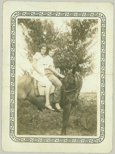 Two on a horse