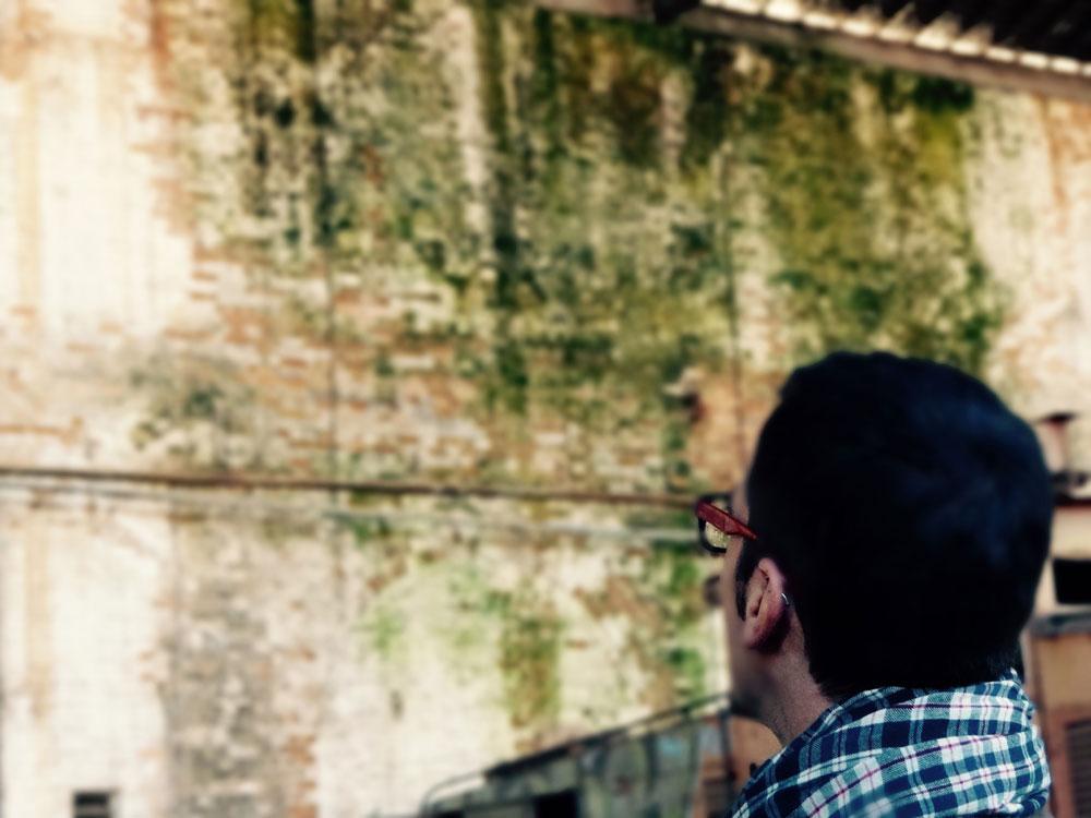 Leyendo Historia en las paredes del Complejo FEPASA (foto Solimán López)