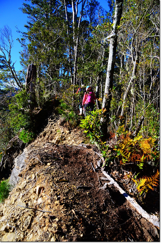 西納基山崩壁瘦稜