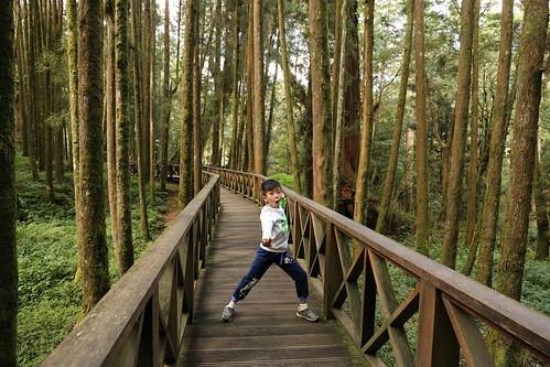 阿里山森林遊樂區