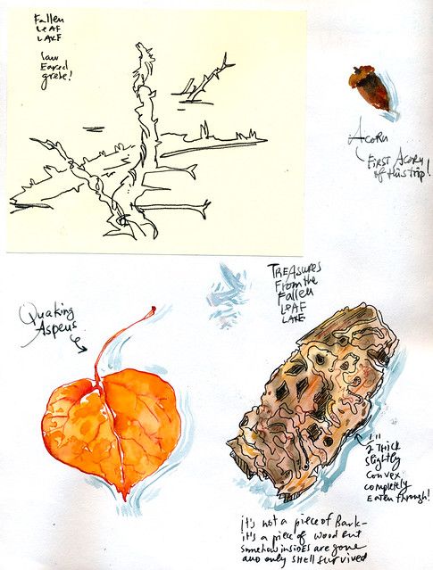 Sketchbook #101: Trip to South Tahoe