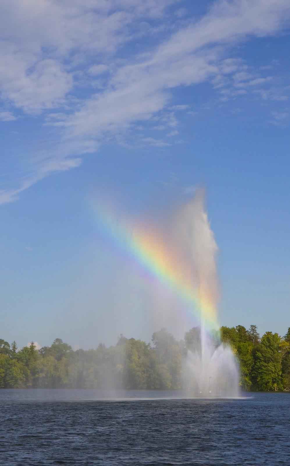 confed rainbow4