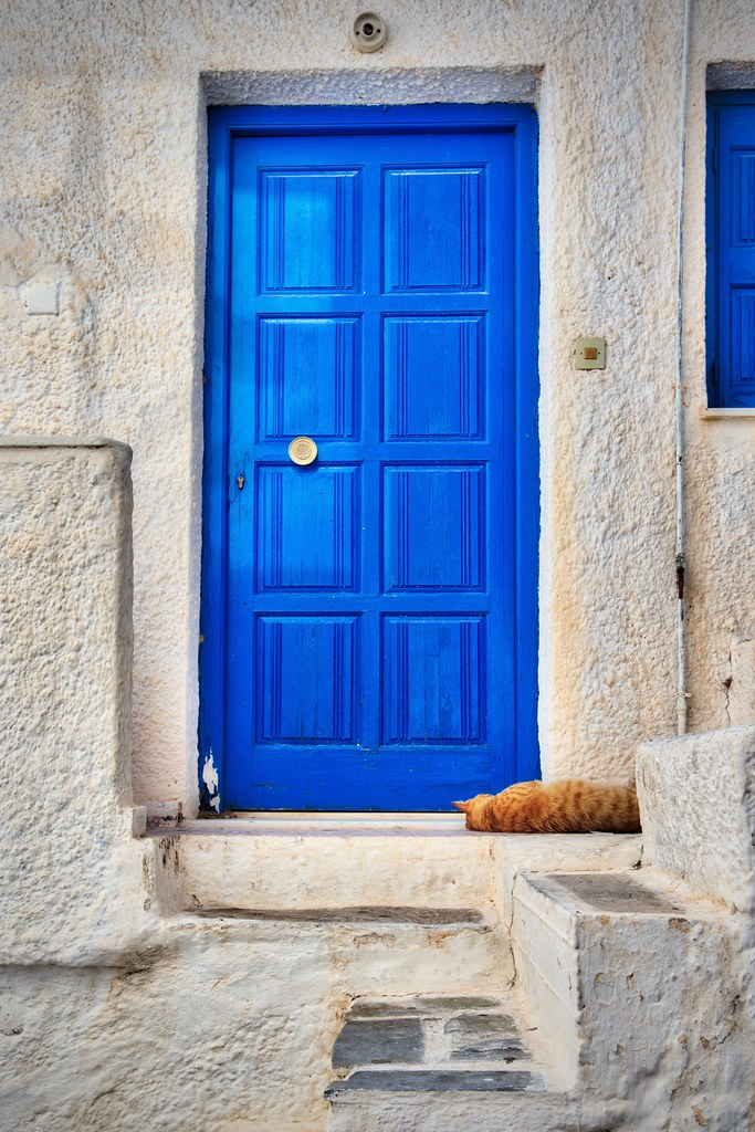 Blue Door, Orange Cat