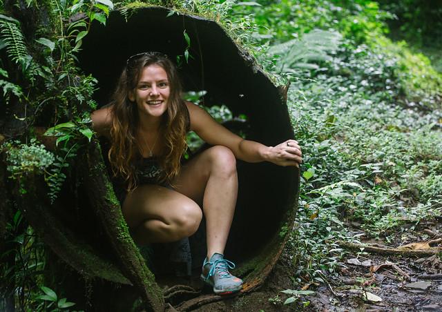 161113_REE_Monteverde_Reserve_154