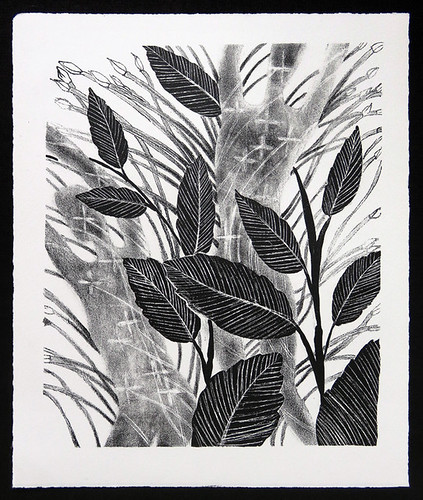 Litho Print of Dancing Leafs of the Ixora Plant