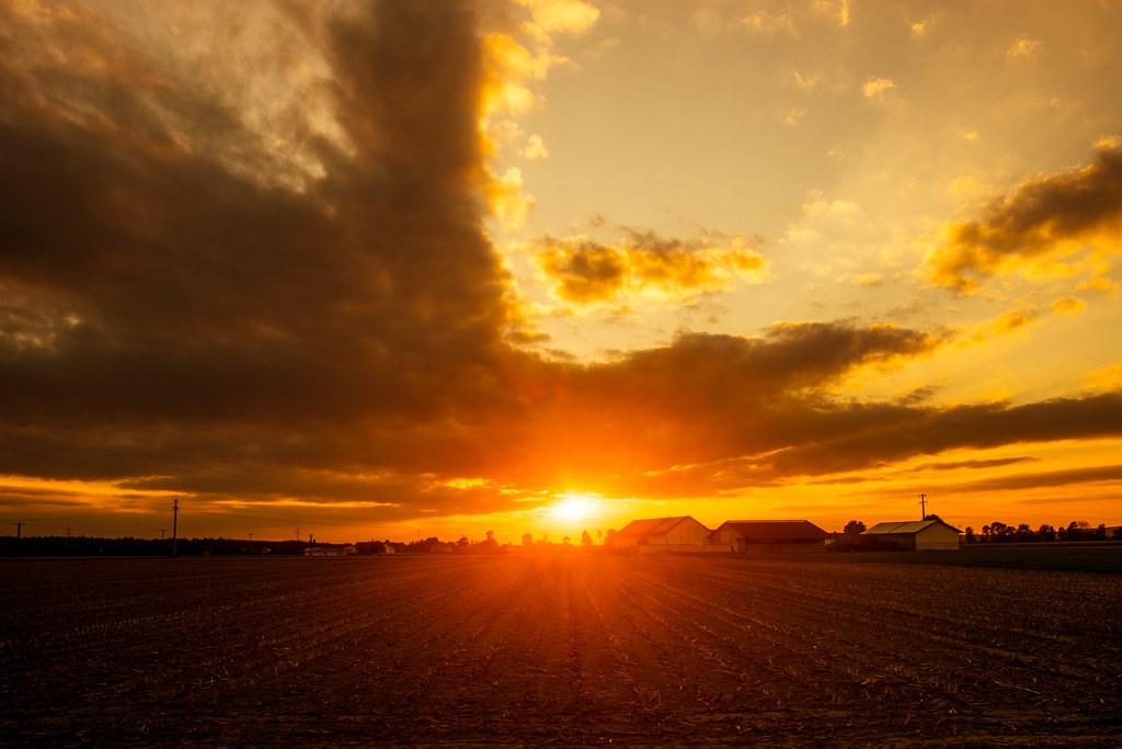 Rokkor Sunset