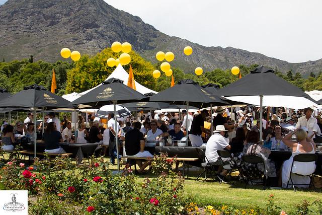 2015 Franschhoek Cap Classique & Champagne Festival