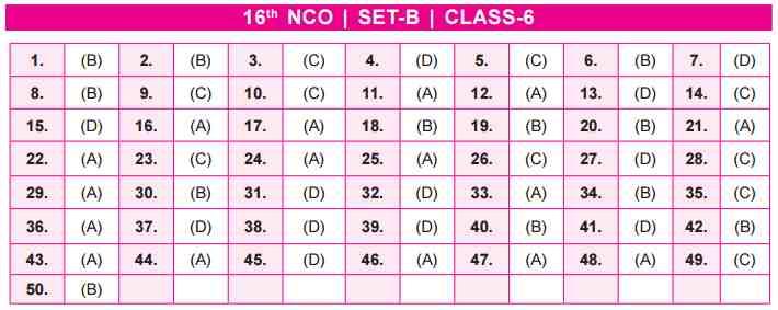 NCO Answer Key Set B Class 6