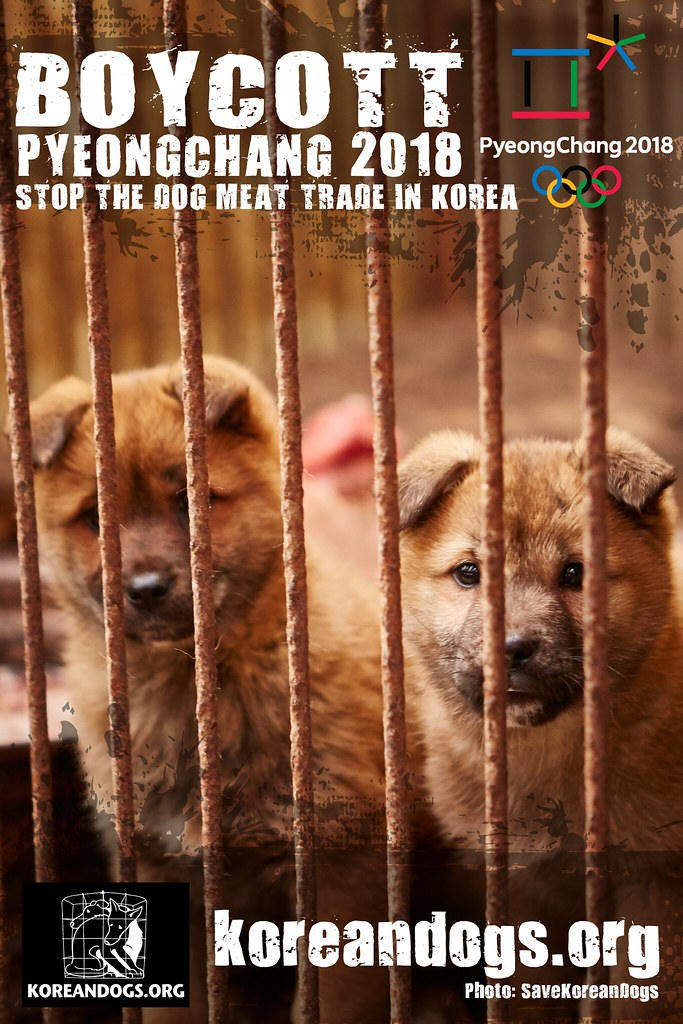 Boycott Pyeongchang_1440x2160_o