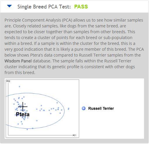 PCA Test