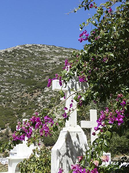 cimetière drosiani 2