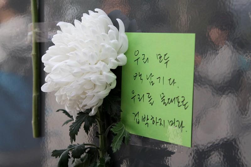 20161012_고(故)백남기 농민 '애도와 추모의 벽'