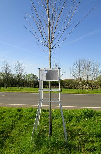 Remembrance Tree, Menin Road, Ypres