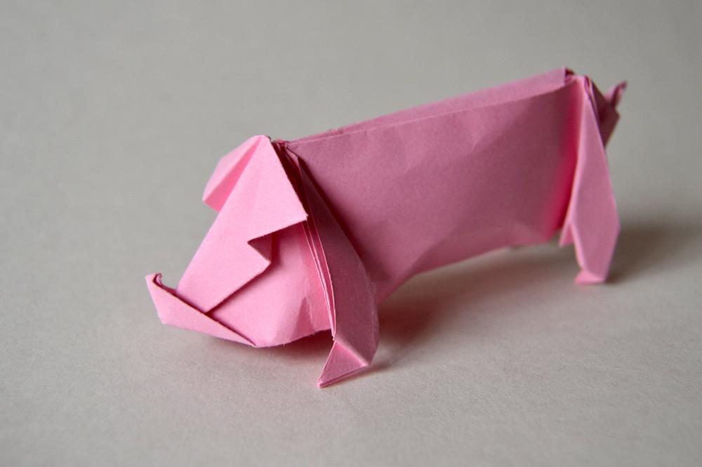 231-Pig
